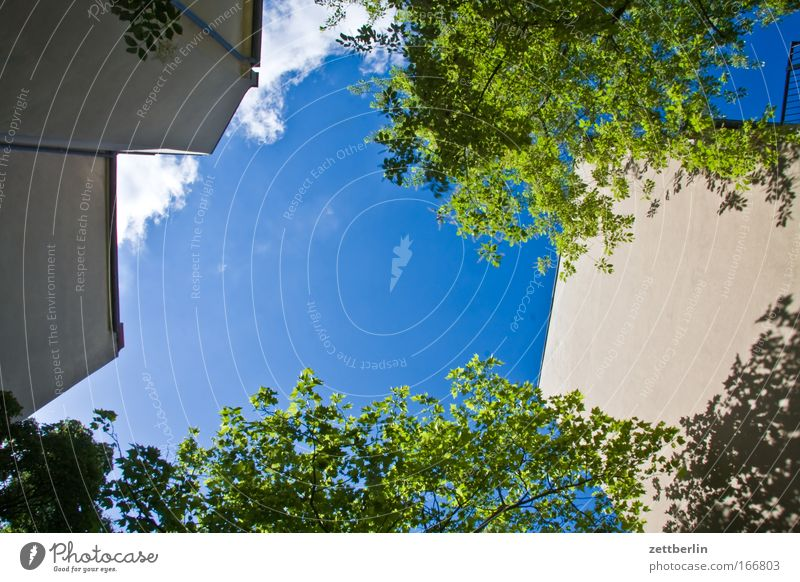 Wiederholung Hinterhof Hinterhalt Rad hinten Stadthaus Haus Gebäude Mauer Brandmauer Mieter Vermieter Himmel Wolken schleierwolken Cirrus Sommer grün Baum Blatt