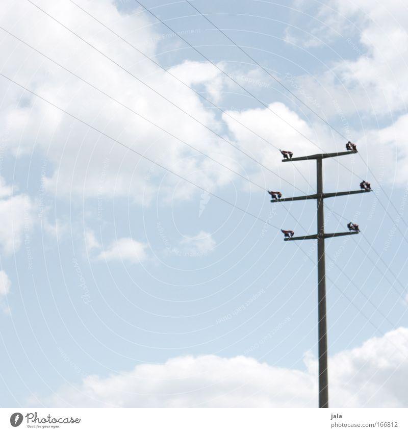 Ober-Leitung Himmel blau Wolken Energiewirtschaft Elektrizität Technik & Technologie Telekommunikation