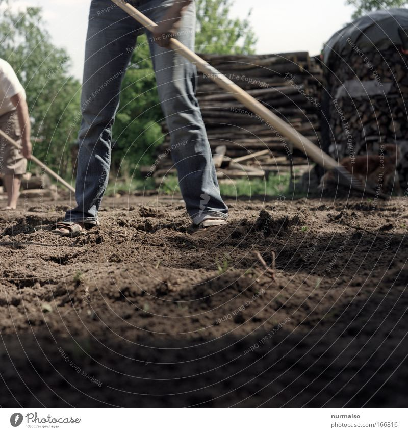 Ackerbau Mensch Natur Hand Freude Tier Landschaft Bewegung Garten Beine Fuß Park Erde braun Kraft Feld dreckig