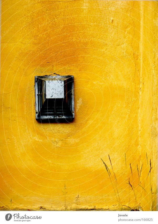 Prachgelbe Wand mit Metaldings und zartem Frühlingsgras Farbfoto Außenaufnahme Detailaufnahme Menschenleer Textfreiraum rechts Textfreiraum oben