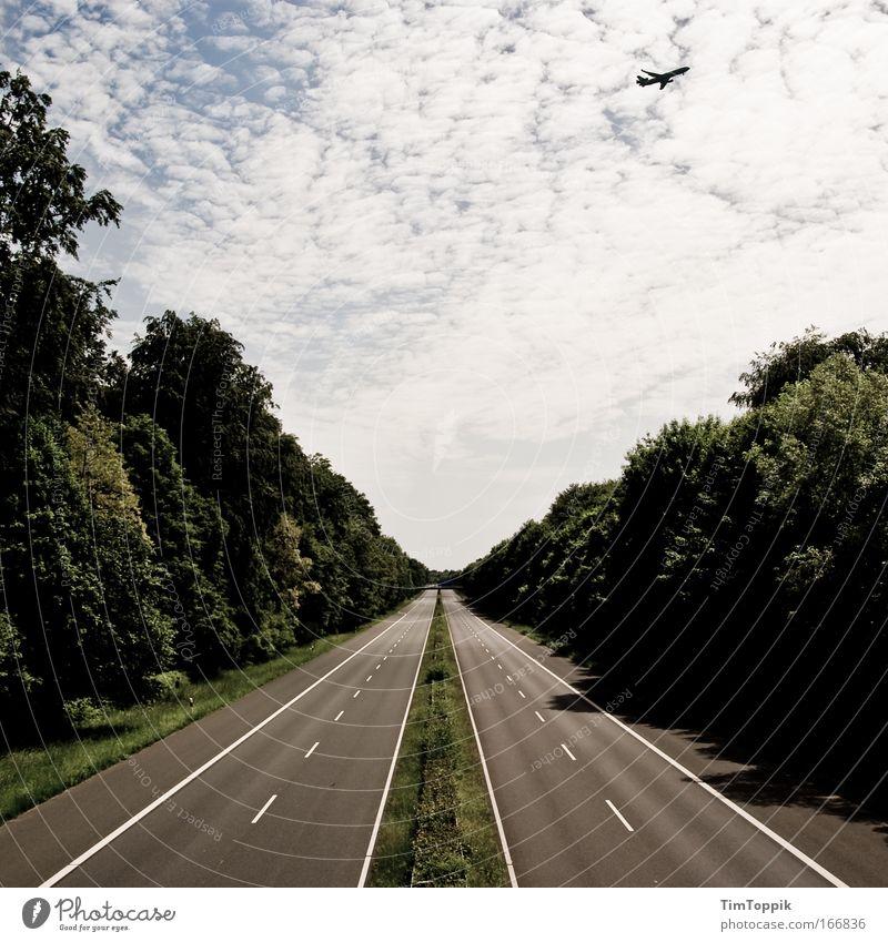 The Day After #1 Außenaufnahme Kontrast Weitwinkel Wald Verkehrsmittel Verkehrswege Straßenverkehr Autofahren Autobahn Brücke Luftverkehr Flugzeug