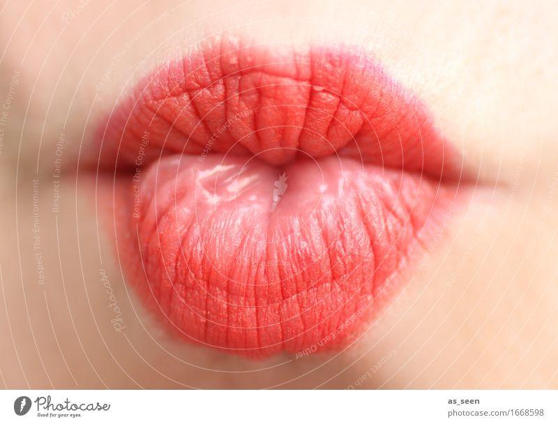 Red lips Mensch Farbe schön Erotik Liebe Gefühle feminin Lifestyle rosa modern ästhetisch Fröhlichkeit Mund weich Hochzeit