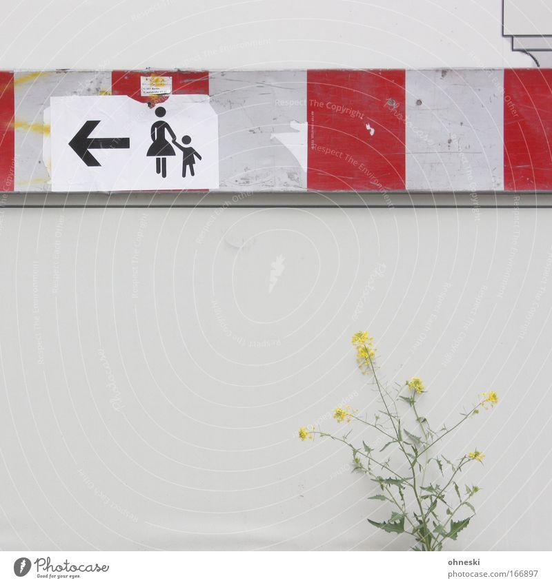 Mütter und Kinder zuerst! mehrfarbig Textfreiraum links Textfreiraum Mitte Pflanze Blume Gras Sträucher Mauer Wand Zeichen Schilder & Markierungen Hinweisschild