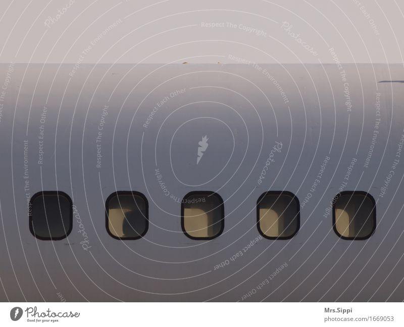 Einblick Ferien & Urlaub & Reisen weiß Tourismus Luftverkehr warten Flugzeug Abenteuer Flughafen Passagierflugzeug