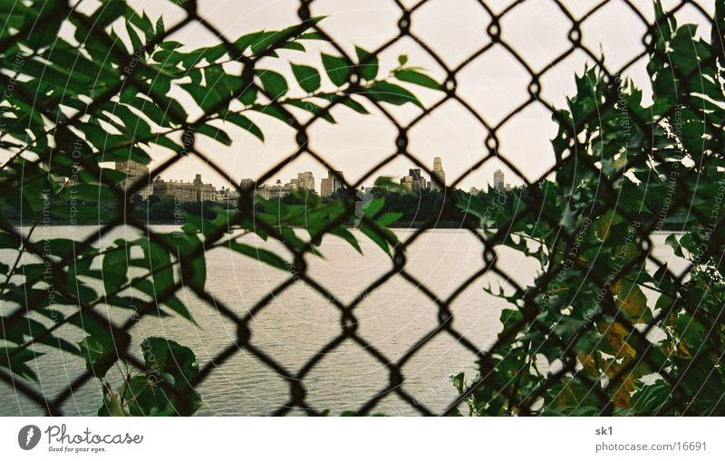 Central fence New York City Central Park Zaun grün Hochhaus Wasser