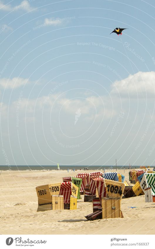 strandaufsicht Himmel Sonne Meer Sommer Freude Strand Ferien & Urlaub & Reisen Wolken Erholung oben Küste Wind fliegen Horizont Ausflug