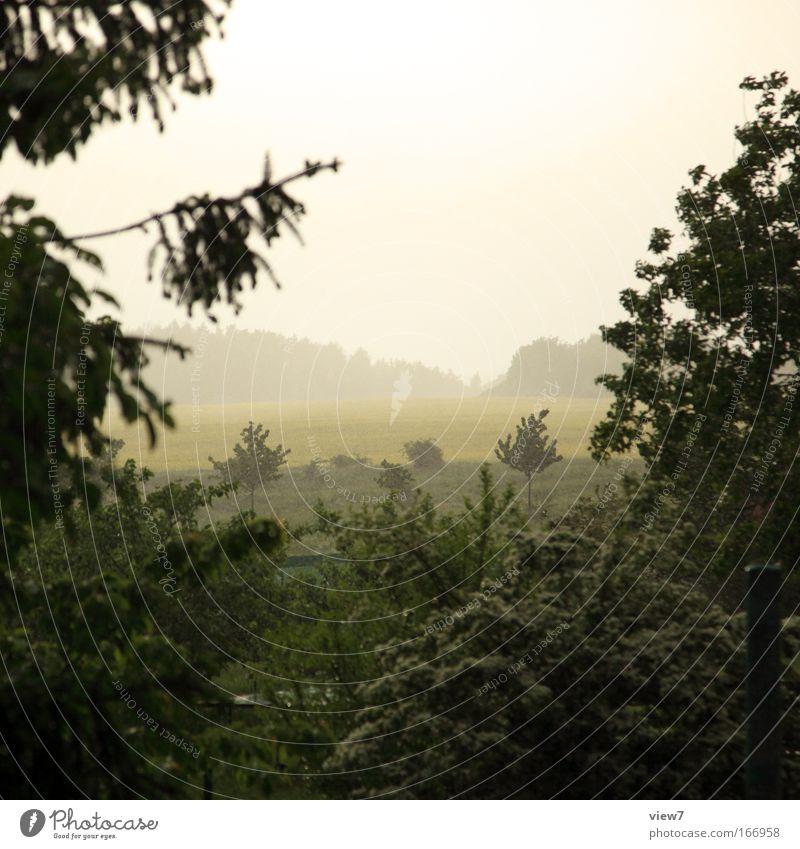 Regenwetter Himmel Natur Wasser grün schön Pflanze Sommer Wiese Freiheit Landschaft Frühling Umwelt Regen Park Wärme Wetter