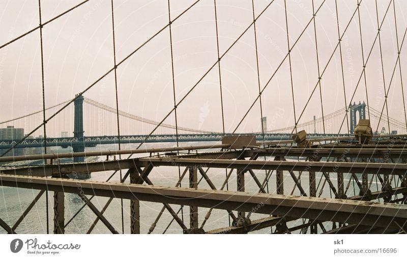 Das Netz der ... Brücke Meer Metall Brücke New York City Drahtseil Brooklyn Bridge