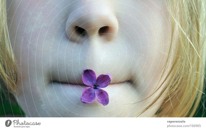 hmmm, flieder Kind Mädchen schön ruhig Gesicht Blüte Glück Frühling Mund blond Zufriedenheit Nase Freizeit & Hobby Kindheit Pause natürlich