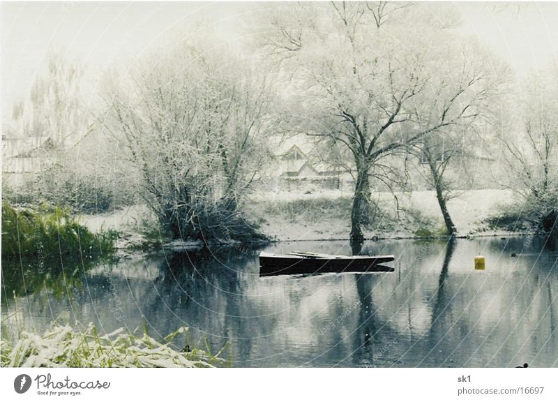 Winter am See Baum Wasserfahrzeug grün ruhig kalt Schnee Idylle Kahn