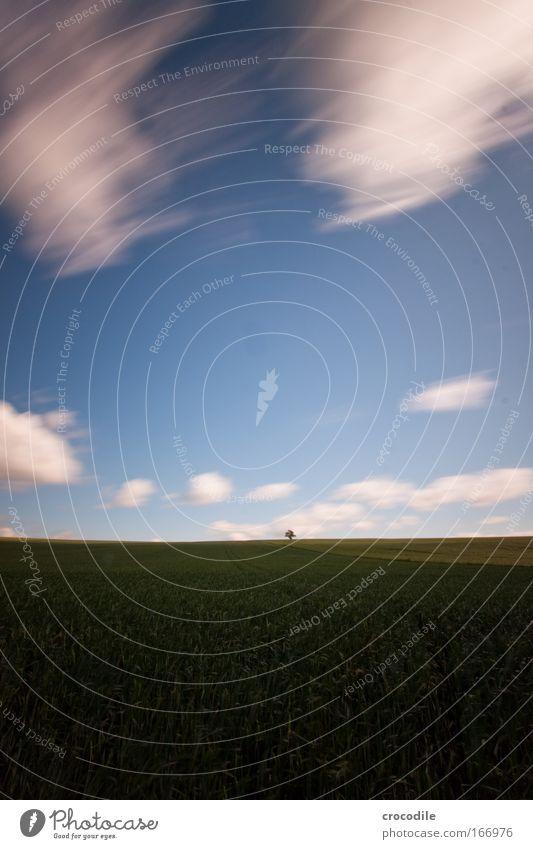 wolkenfetzen Farbfoto Außenaufnahme Menschenleer Textfreiraum oben Textfreiraum unten Textfreiraum Mitte Morgen Schatten Kontrast Bewegungsunschärfe