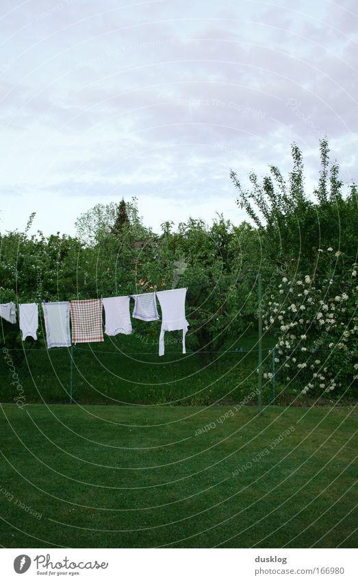 frische Wäsche Himmel weiß ruhig Umwelt Landschaft Wiese Garten hell Wind Bekleidung T-Shirt Reinigen Sauberkeit Frieden Gelassenheit Hemd