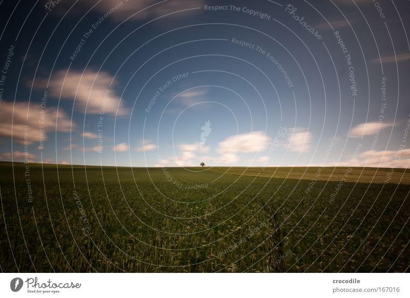 wolkenfetzen II Natur schön grün blau Pflanze Wolken Frühling Landschaft Luft Kraft Feld Wind Wetter Umwelt Horizont ästhetisch