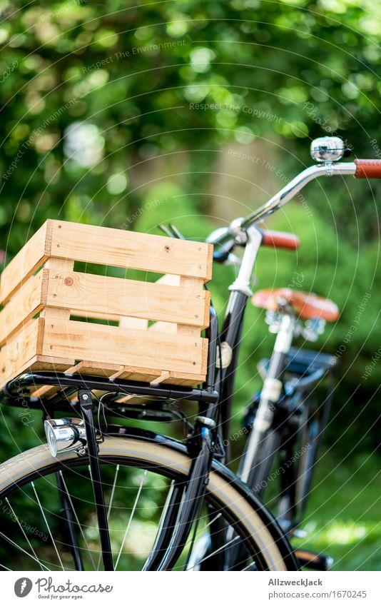 Hollandrad-Porn 1 Fahrradfahren ästhetisch trendy retro grün schwarz Mobilität nachhaltig Güterverkehr & Logistik Transportfahrzeug Fahrradporn Farbfoto