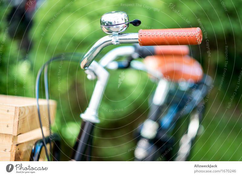 Hollandrad-Porn 11 grün schwarz braun Fahrrad retro Fahrradfahren Güterverkehr & Logistik trendy Mobilität nachhaltig Nostalgie Fahrradklingel Fahrradlenker