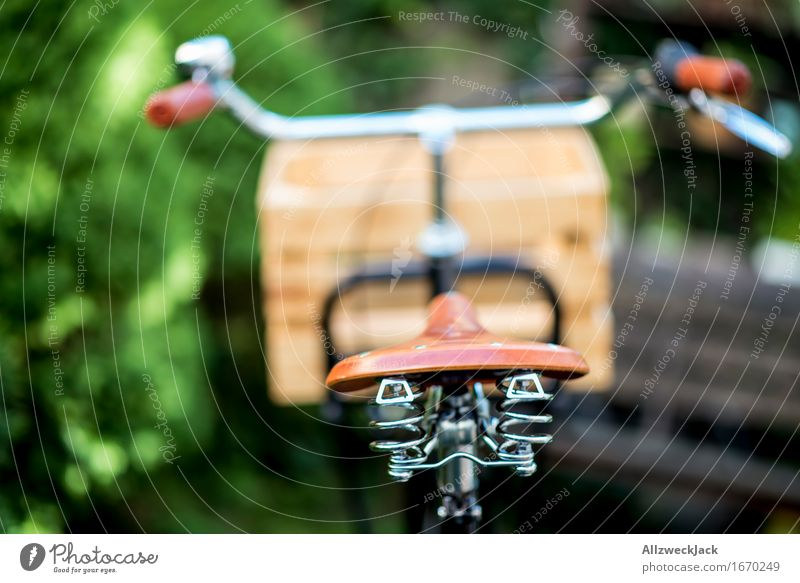 Hollandrad-Porn 3 Fahrradfahren ästhetisch trendy retro grün schwarz Mobilität nachhaltig Güterverkehr & Logistik Transportfahrzeug Fahrradporn Farbfoto