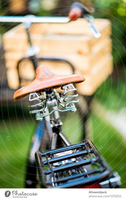 Hollandrad-Porn 5 Fahrradfahren ästhetisch trendy retro grün schwarz Reichtum Mobilität nachhaltig Nostalgie Güterverkehr & Logistik Transportfahrzeug