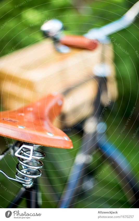Hollandrad-Porn 14 Verkehrsmittel Fahrradfahren trendy retro braun grün schwarz Mobilität nachhaltig Nostalgie Güterverkehr & Logistik Lastenfahrrad