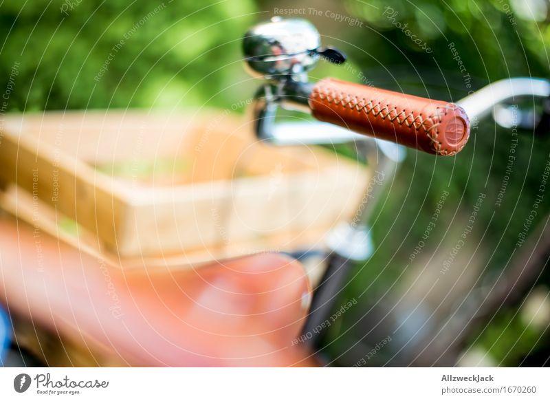 Hollandrad-Porn 4 Fahrradfahren ästhetisch trendy retro grün schwarz Reichtum Mobilität nachhaltig Güterverkehr & Logistik Transportfahrzeug Griff
