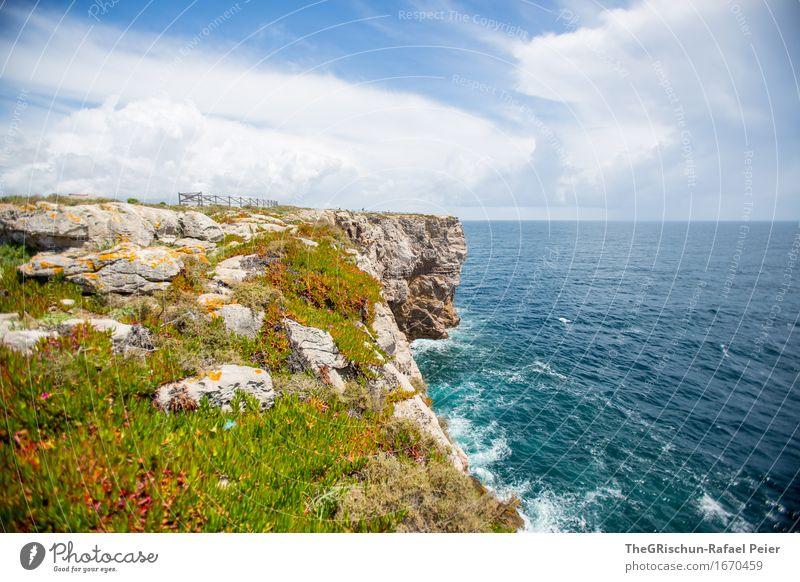 Küstenwiese Himmel Natur Ferien & Urlaub & Reisen blau grün Wasser weiß Meer Landschaft Blume Erholung Wolken schwarz Umwelt gelb