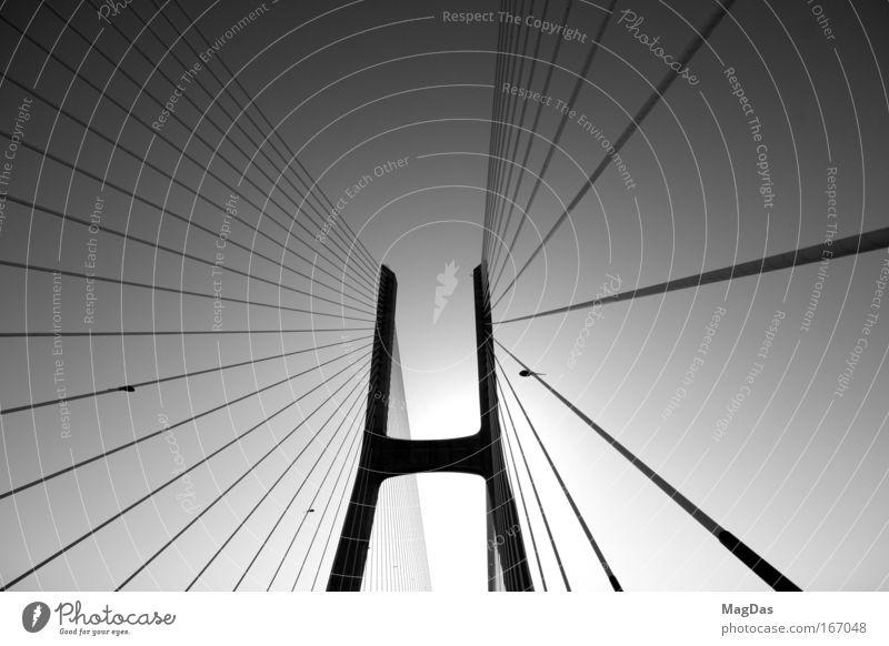 roadtrip2 Bewegung Zufriedenheit frisch Brücke beobachten Straßenverkehr nachhaltig innovativ Verkehrsmittel Schwerpunkt