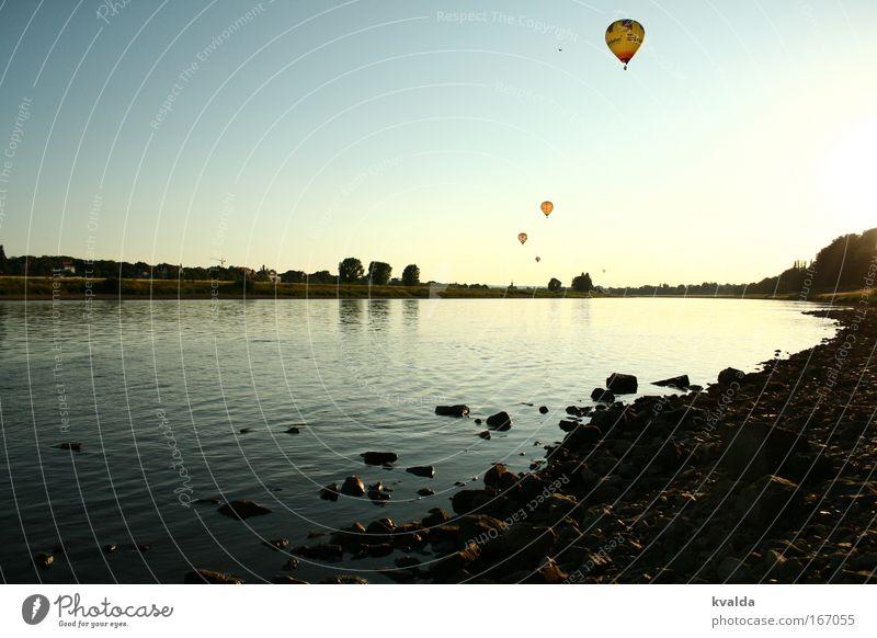 Wegfliegen Natur Wasser blau Sommer ruhig Erholung Freiheit Stein Landschaft Umwelt Horizont Ausflug Fluss Dresden Sehnsucht