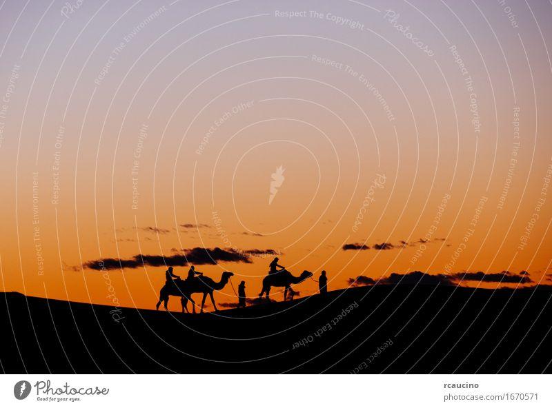 Mensch Natur Ferien & Urlaub & Reisen Mann Sommer schön Farbe Landschaft Erholung rot Einsamkeit Erwachsene Wärme Freiheit Menschengruppe Sand