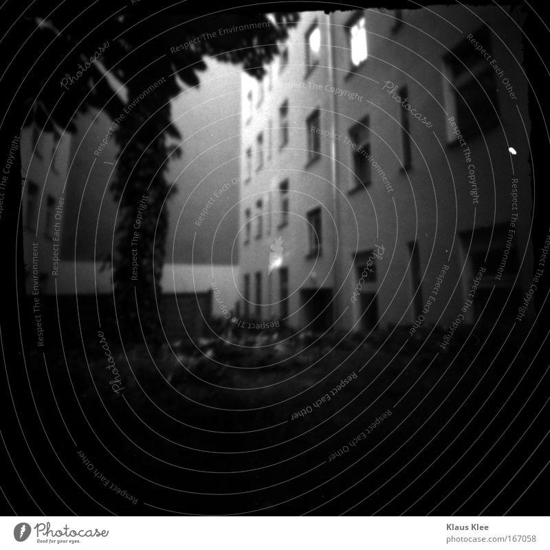 THE NOISE GOES AROUND . alt weiß Baum Stadt Haus schwarz Tod Fenster träumen Traurigkeit Zusammensein Armut elegant verrückt Schutz Sehnsucht