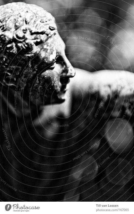 altes eisen aus stein Schwarzweißfoto Außenaufnahme Tag Porträt Blick nach vorn maskulin 1 Mensch Denkmal Stein muskulös schwarz Kraft Unschärfe