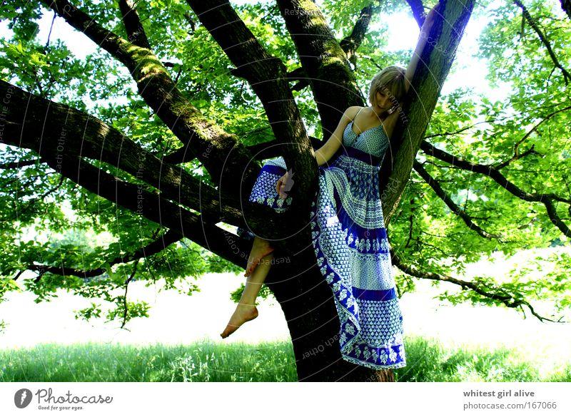 new love grows on trees. Mensch Natur Jugendliche feminin Gefühle Traurigkeit Denken warten Gedanke Frau Junge Frau