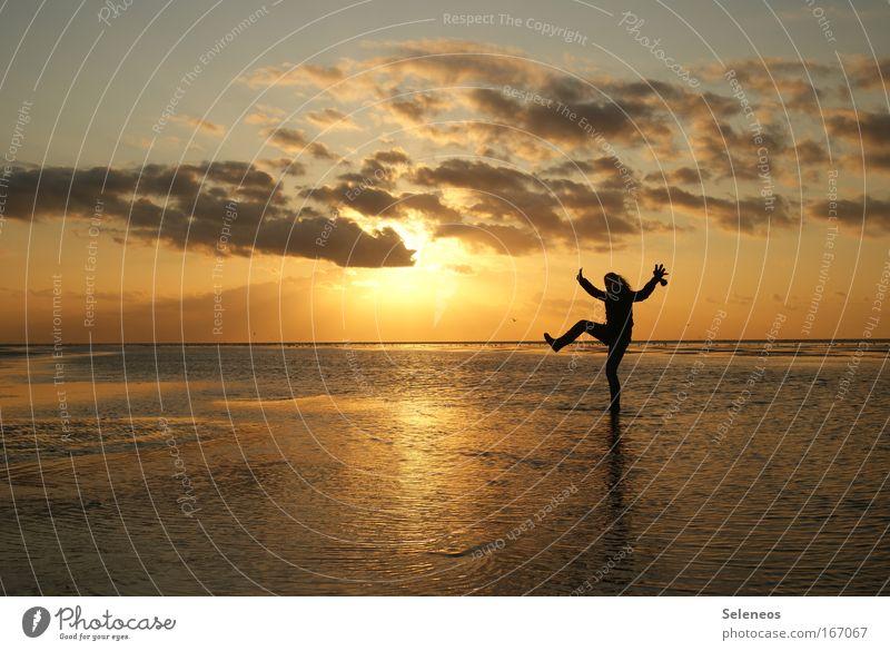 AbendStimmung Wasser Himmel Sonne Freude Wolken Erholung Herbst Bewegung Landschaft Küste frei frisch Fröhlichkeit Freundlichkeit Schönes Wetter Nordsee