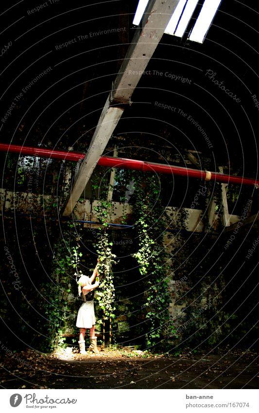 Fensterlicht Mensch feminin Junge Frau Jugendliche 1 18-30 Jahre Erwachsene Efeu Grünpflanze Industrieanlage Fabrik Bauwerk Mauer Wand Dach Kleid Stiefel blond