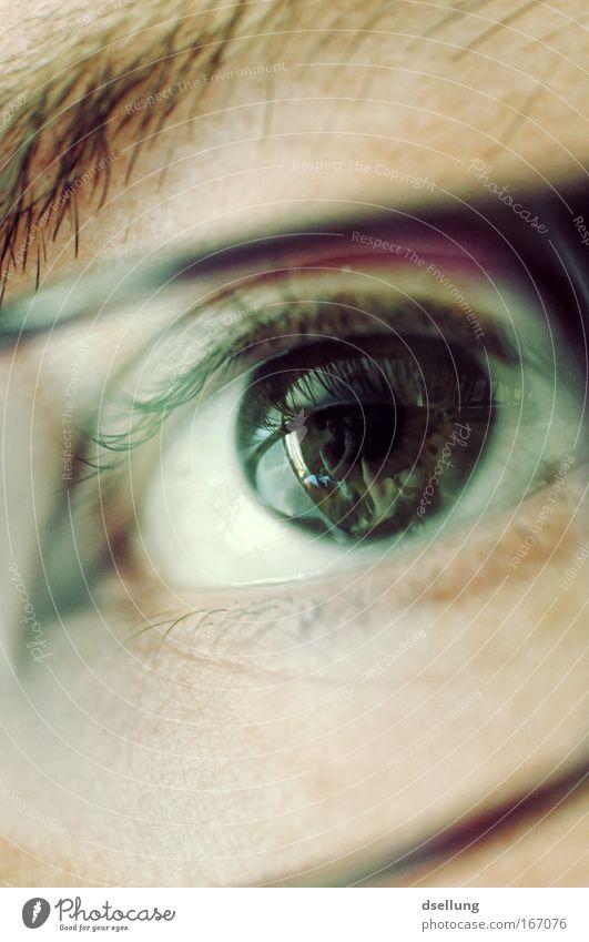 Alles im Blick Mensch Jugendliche Gesicht Auge Kopf glänzend Erwachsene maskulin Brille Sorge Junger Mann 18-30 Jahre
