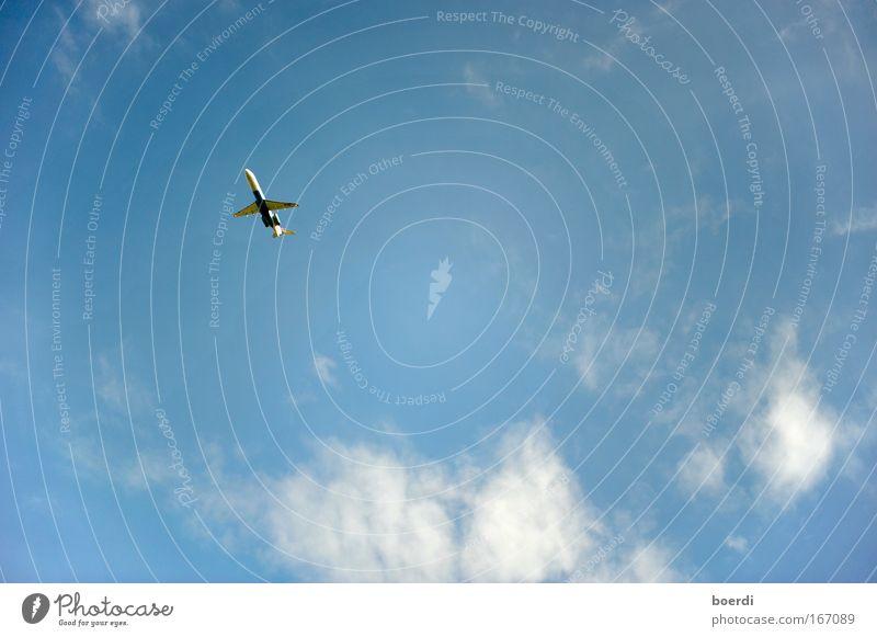 aUfwärts Himmel Ferien & Urlaub & Reisen Ferne Freiheit fliegen Ausflug Beginn Flugzeug Geschwindigkeit Luftverkehr Zukunft Unendlichkeit Flugzeugstart Richtung