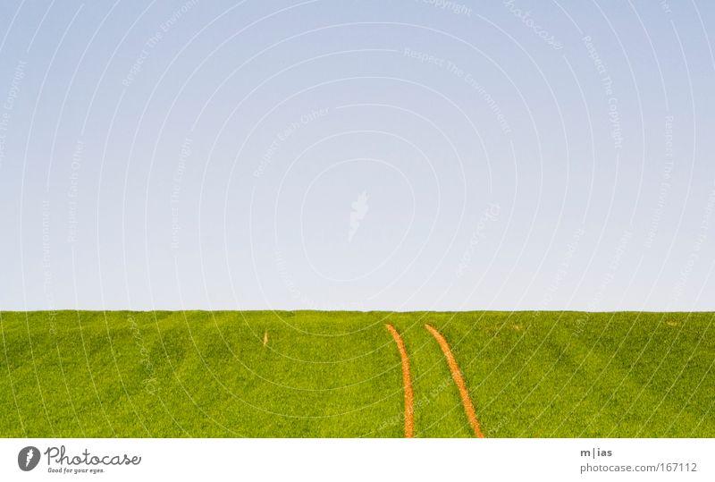 Der Weg ist das Ziel. Natur Himmel Sonne Pflanze Sommer Einsamkeit Ferne Wiese Gras Frühling Wärme Landschaft Luft Feld groß frei
