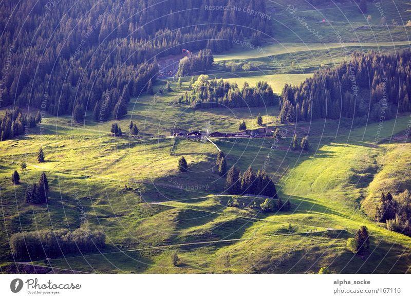 Natur pur Ferien & Urlaub & Reisen Sommer Baum Landschaft Berge u. Gebirge Gras Wege & Pfade Freiheit Freizeit & Hobby Tourismus wandern groß Ausflug