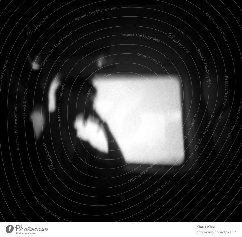 THE NOISE GOES AROUND : schön heiß Angeln exotisch stricken Polaroid