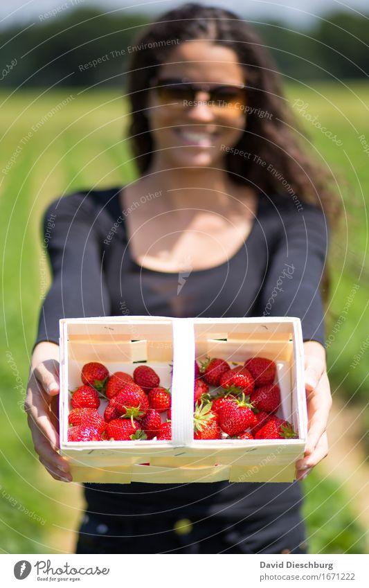 Sammlerin Natur Jugendliche Pflanze Sommer grün Junge Frau rot 18-30 Jahre Erwachsene Frühling feminin Gesundheit Lebensmittel Frucht Feld Ernährung