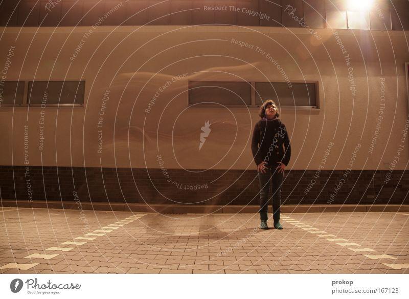 Flugpferd Farbfoto Gedeckte Farben Außenaufnahme Experiment Textfreiraum unten Nacht Kunstlicht Licht Gegenlicht Langzeitbelichtung Starke Tiefenschärfe Totale