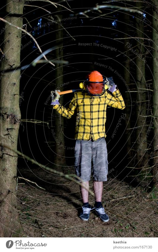 rockefeller II Mensch Mann Natur Jugendliche Baum gelb Wald Leben dunkel Holz Erwachsene wandern maskulin verrückt bedrohlich