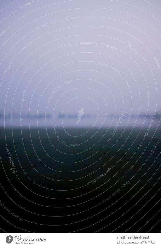 KRIECHENDE KALTE NÄSSE Farbfoto Gedeckte Farben Außenaufnahme abstrakt Menschenleer Textfreiraum oben Hintergrund neutral Morgendämmerung Unschärfe
