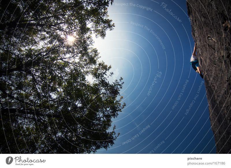 der sonne entgegen Mensch Mann blau Baum Sonne Erwachsene Sport Berge u. Gebirge Kraft Felsen Freizeit & Hobby Abenteuer außergewöhnlich gefährlich Klettern
