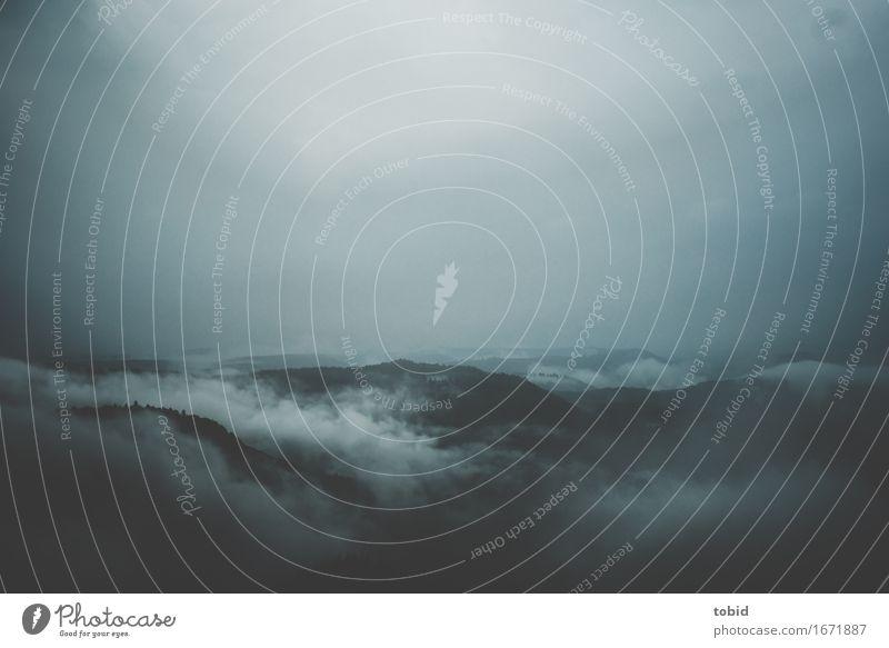 Trist Natur Landschaft Pflanze Himmel Wolken Horizont schlechtes Wetter Nebel Wald Hügel bedrohlich dunkel Ferne Einsamkeit einzigartig Endzeitstimmung kalt