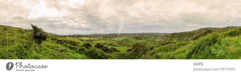 Power of Corsica Natur Landschaft Erde Luft Wolken Horizont Frühling Wetter Gras Feld Hügel Europa Gefühle Stimmung achtsam Abenteuer Panorama Farbfoto