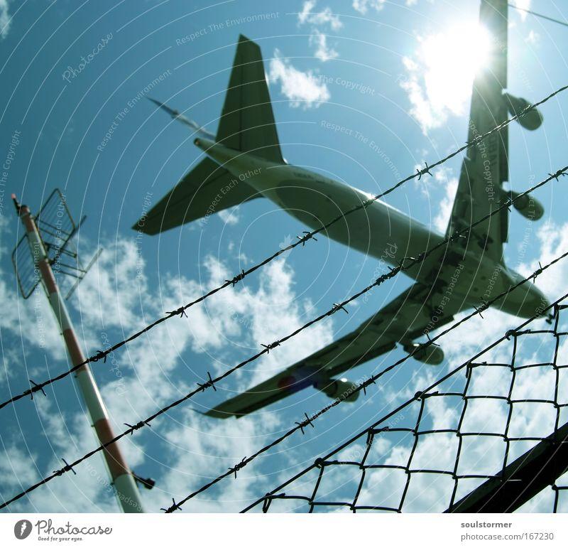 Kopf einziehen! Himmel blau weiß grün Ferien & Urlaub & Reisen Sonne Sommer Wolken Erholung Freiheit Bewegung fliegen groß Flugzeug außergewöhnlich Luftverkehr