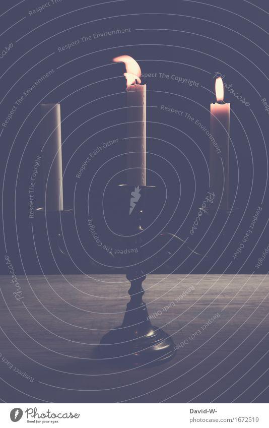 Luftzug elegant Feste & Feiern Valentinstag Geburtstag Trauerfeier Beerdigung heiß schön Nostalgie Romantik Festessen Kerze Flamme Feuer hell dunkel schwarz