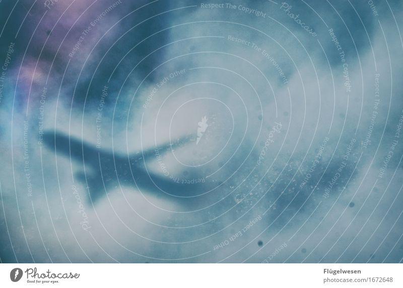 Sichtweite Ferien & Urlaub & Reisen Tourismus Ausflug Abenteuer Ferne Freiheit Umwelt Klima Klimawandel Wetter Nebel Luftverkehr Flugzeug Passagierflugzeug