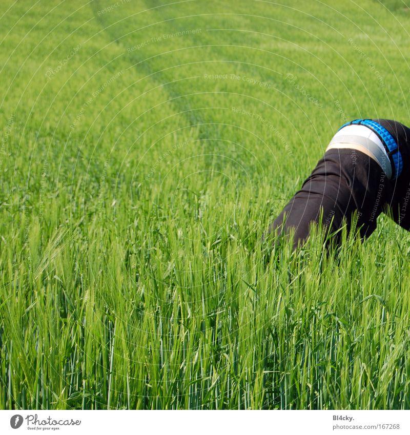 Komm, wir spielen verstecken Mensch Mann Jugendliche Erwachsene Gras Frühling Feld Rücken maskulin außergewöhnlich Gesäß skurril seltsam Junger Mann Weizen