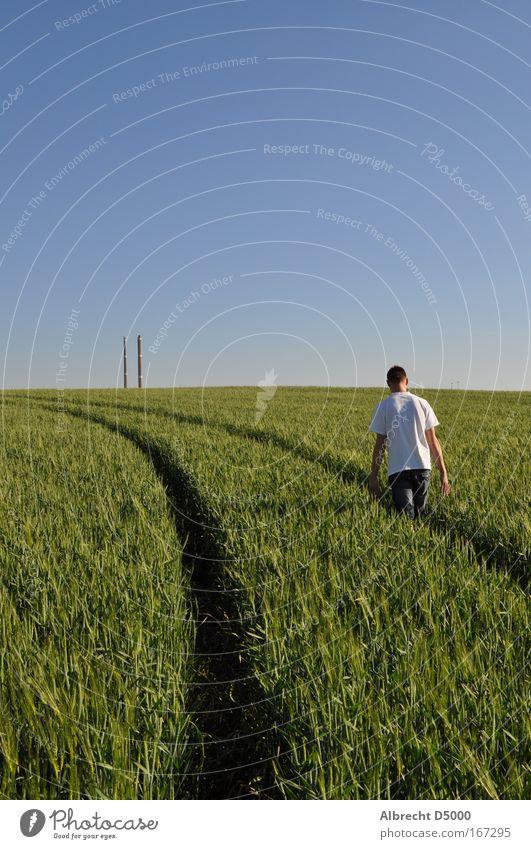 Wohin deine Füße Dich Tragen Mensch Natur blau Jugendliche grün weiß Pflanze schwarz Erwachsene Leben grau Wege & Pfade Denken träumen Feld