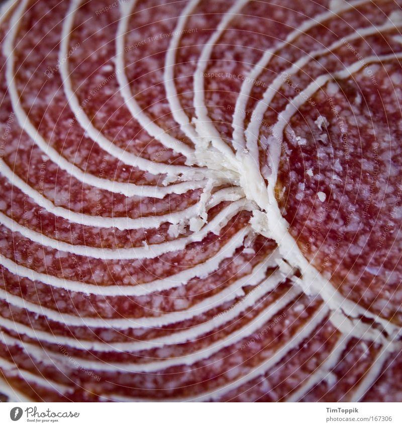 Tolle Wurst #1 Makroaufnahme Menschenleer Vogelperspektive Lebensmittel Fleisch Wurstwaren Ernährung Fett ungesund Salami Spirale Wendeltreppe Fleischfresser